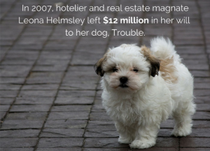 Real-estate-fact-3